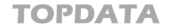 logo-Topdata